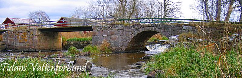 Tidans vattenförbund